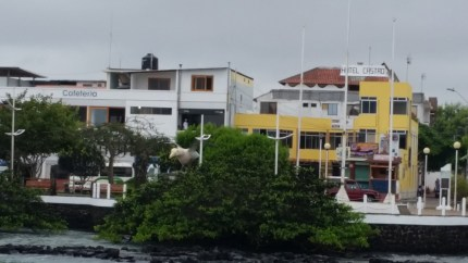 Houses and hotels near the harbor