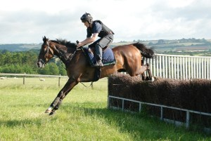 Our horse the good guy schooling over fences