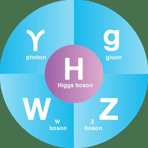 fundamental_bosons