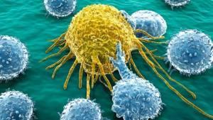 Celula-de-cancer-1