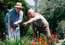 Mutlu Bir Emeklilik Bu 30 Harika Fikirle Çok Kolay