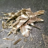 Feathers removed from darts