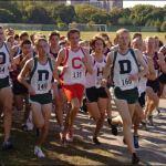 The Running of the Alumni?