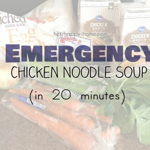 Emergency Chicken Noodle Soup in 20 Minutes