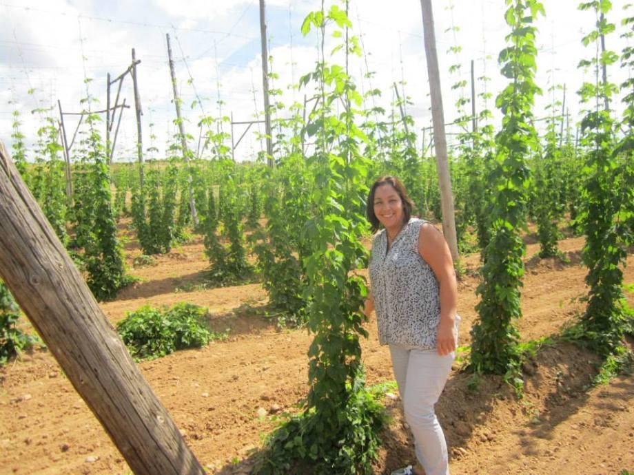 06-plantacion-de-lupulo-hop
