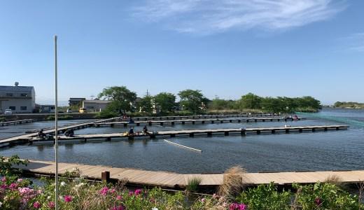 2019.05.02~05.03(つつじ池、五町八幡大池)