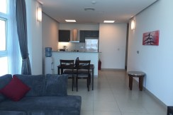 1 BR apartment in Reef Island