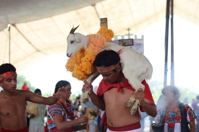 personas en el festival de la matanza