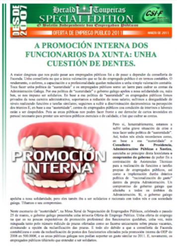Especial Promoción Interna 2011