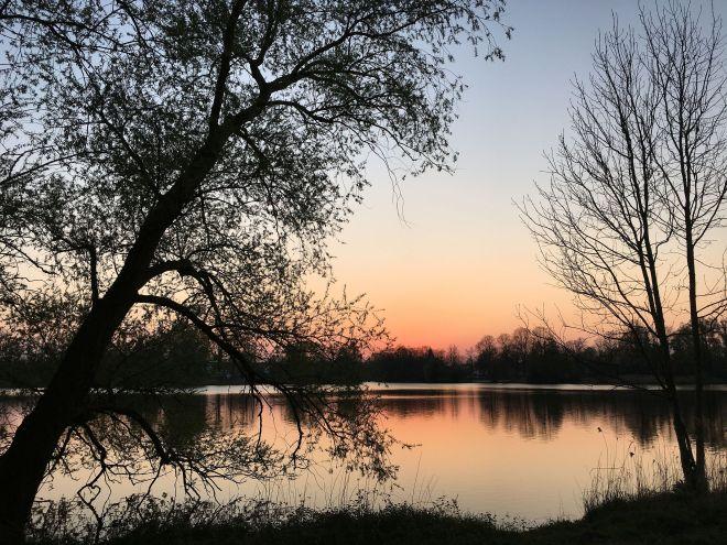 Vechtesee im Sonnenuntergang
