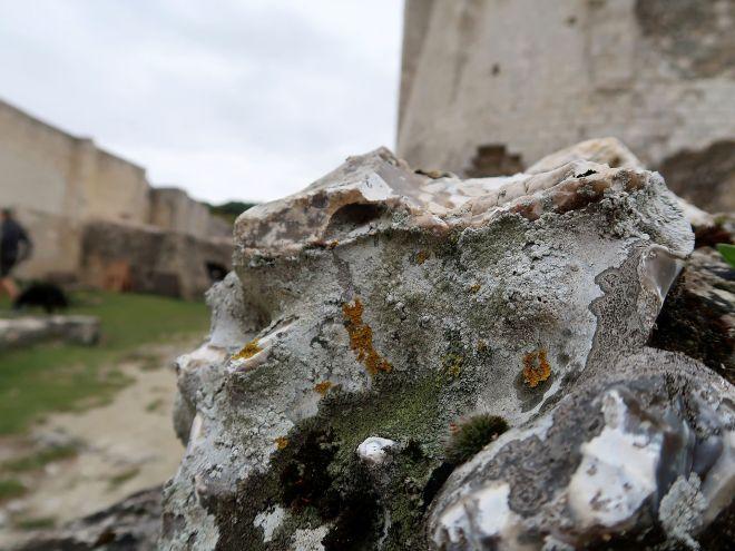Chateau Gaillard_2501