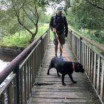 Rundgang im Wald Broceliande
