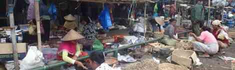 Zout water happen en even 'van-de-fiets-vakantie' in Lombok