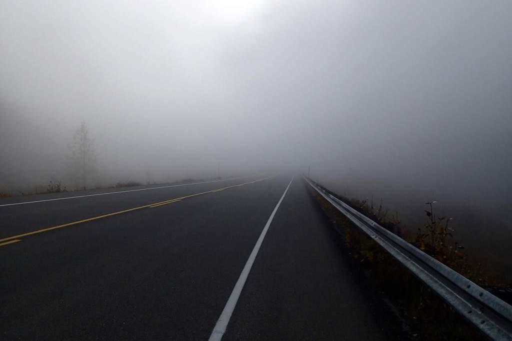 Volop in de mist