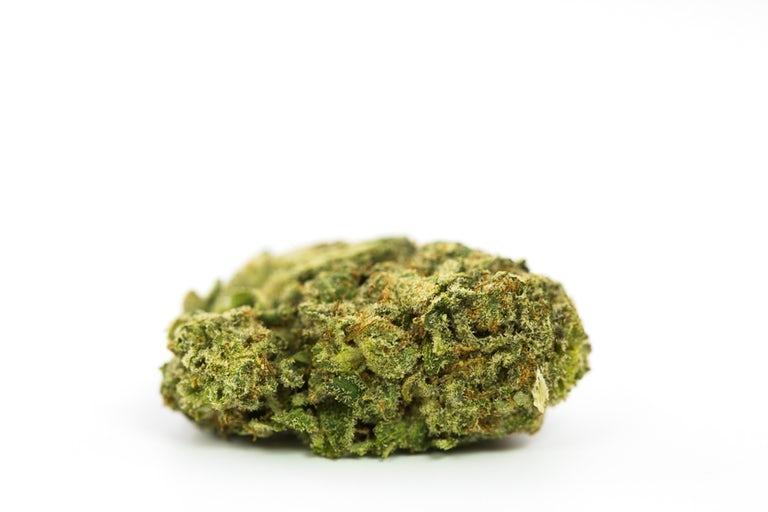 White-Tahoe-Cookies-Marijuana-Strain