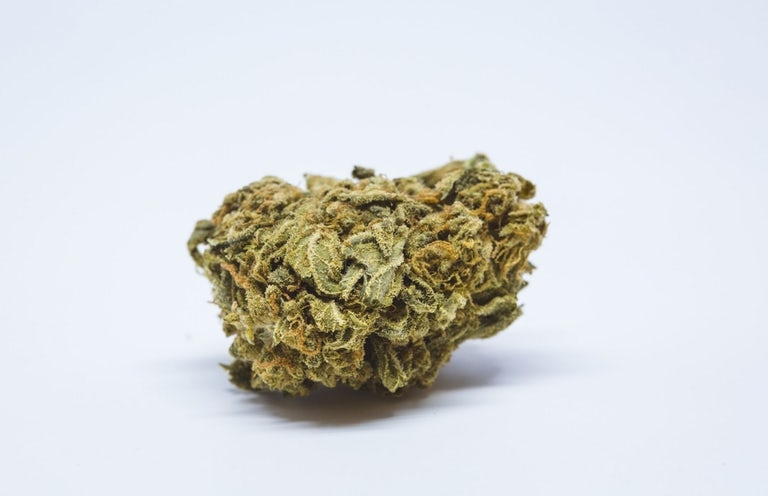 Thin-Mint-Girl-Scout-Cookies-Hybrid-Marijuana-Strain