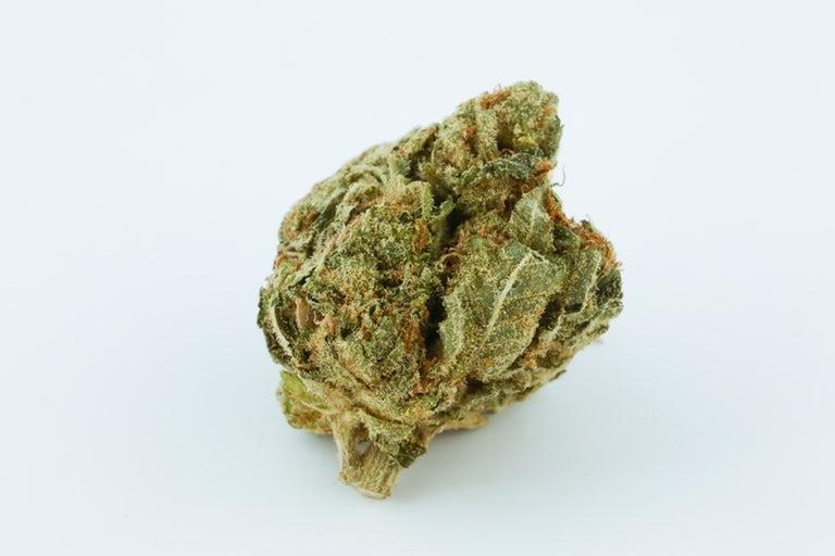 Tutankhamun-King-Tut-Marijuana-Strain