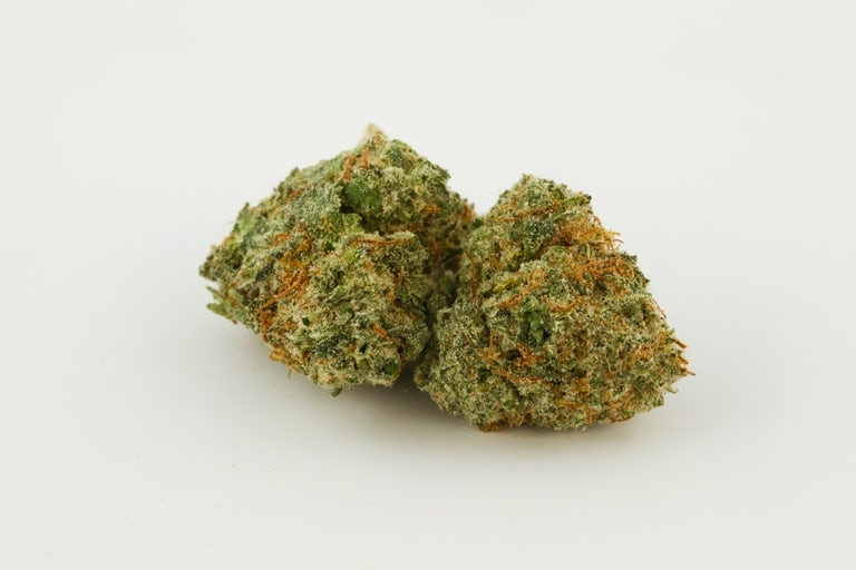 Critical-Kush-Marijuana-Strain