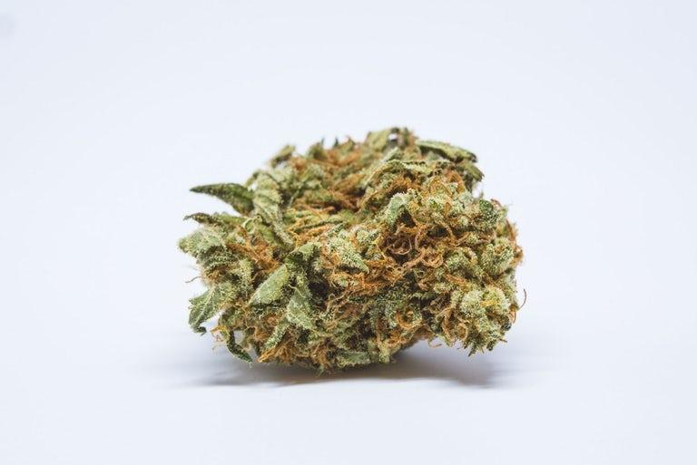 Chernobyl-Marijuana-Strain