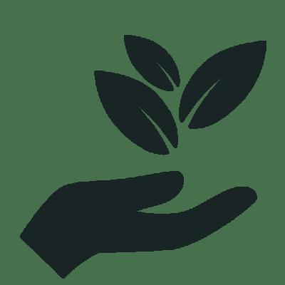 herb40 CBD Oil Natural Organic Oil