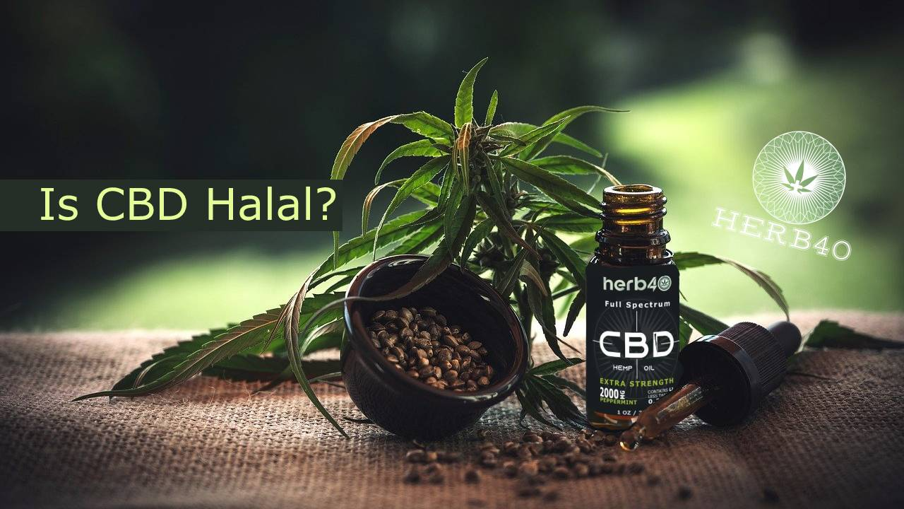 herb40 herbforty cbd oil uk Is CBD Oil Halal Can CBD get you high Is CBD Oil Legal in the UK
