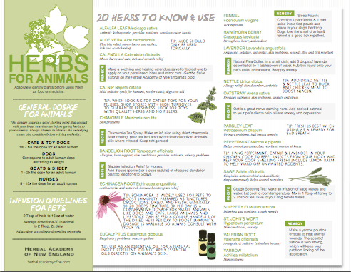 FREE Herbs for Animals Printable Chart by the Herbal Academy of New England