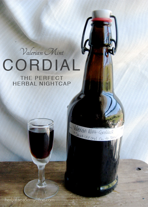 Valerian Mint Cordial - the perfect herbal nightcap
