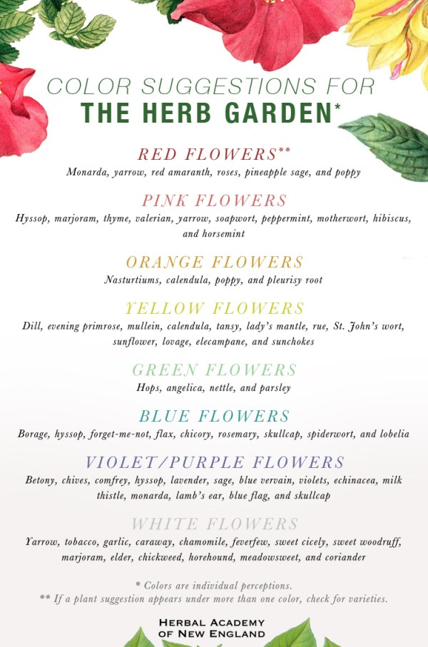 Designing an Herb Garden - Color Suggestions for the Herb Garden
