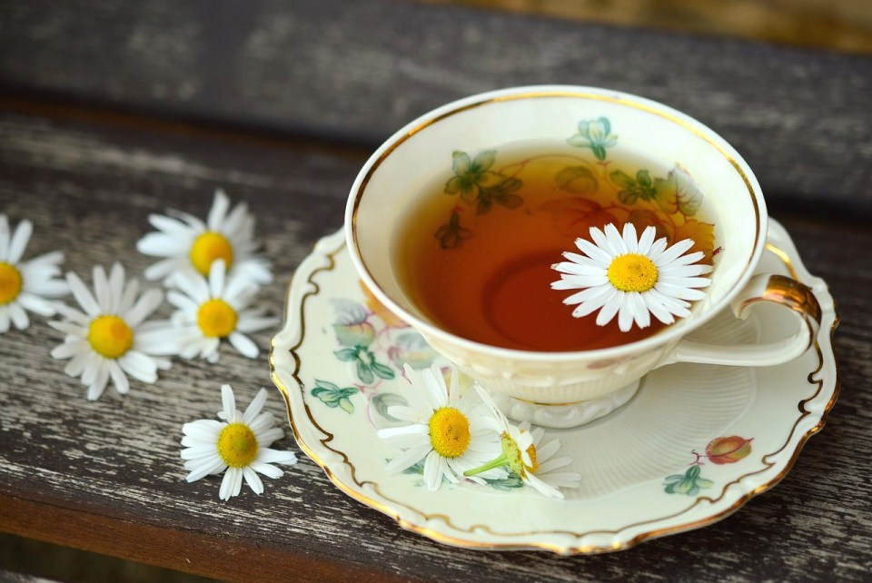 Chamomile Uses and Remedies - pd