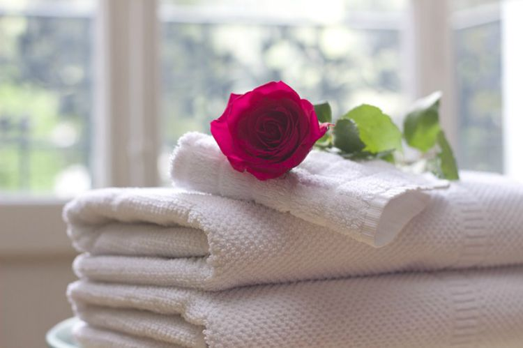 The Comforts Of Rose For Body Care