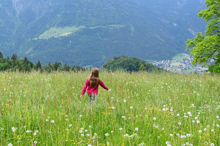 Choosing Safe Herbs for Your Kids