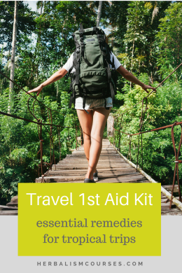 While the typical travel 1st aid kit on the market comes equipped with a few pharmaceutical remedies, there simply aren't equivalents for herbal remedies for trips. #firstaid #1staid #kit #herbalism #herbal #remedies #travel #medicine #natural #health #trips