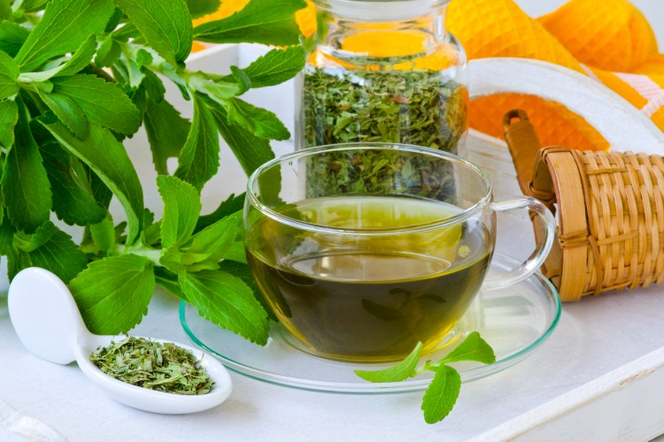 These herbs for calcium make a healthy herbal tea that you can drink daily. #CalciumRecipes #PlantCalcium #CalciumHerbs #HerbalTea #Herbalism #HerbalMedicine #HerbalismCourses #OnlineHerbalCourse