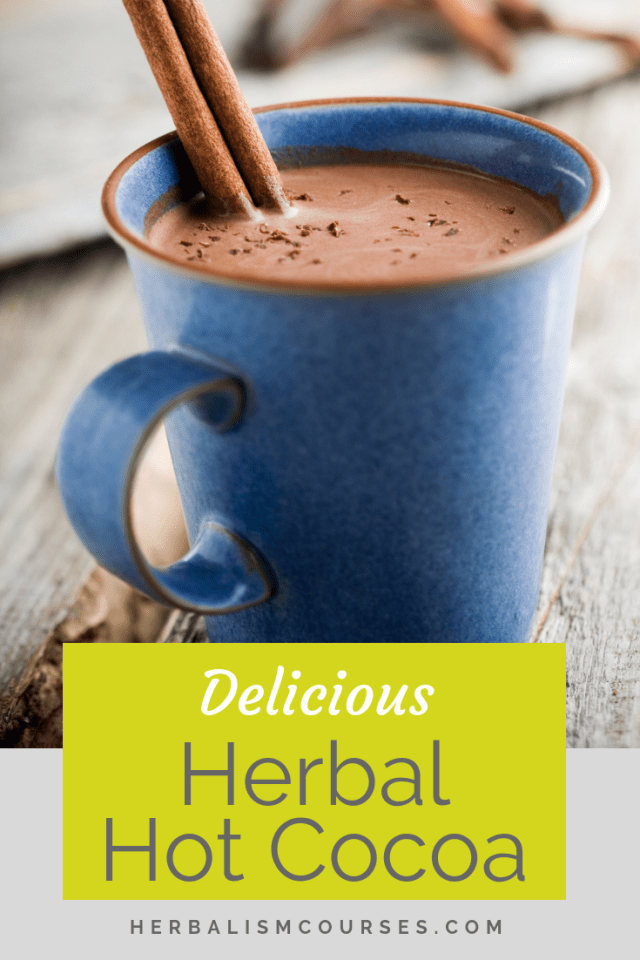 This healthy herbal hot cocoa is as delicious as it is good for you. You will hardly know you are taking your herbal medicine. It shows how herbalism can be fun! #HealthyChocolateRecipes #CocoaBenefits #ChocolateBenefits #CayenneBenefits #CinnamonBenefits #Herbalism #HerbalMedicine #HerbalismCourses #HerbalOnlineCourse