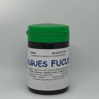 gelule-algues-fucus