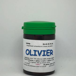 gelules-plantes-olivier