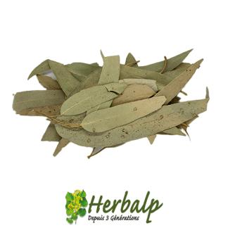 infusion-eucalyptus-feuilles-entieres-herbalp