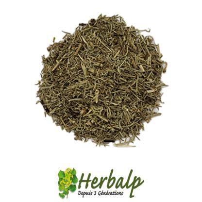infusion-prele-herbalp
