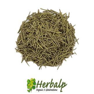 infusion-romarin-herbalp