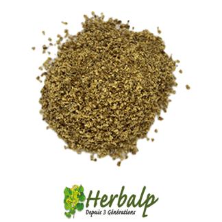 infusion-Sureau-fleurs-herbalp