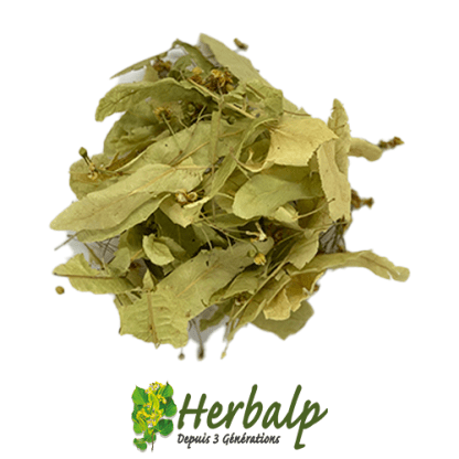 infusion-tilleul-herbalp