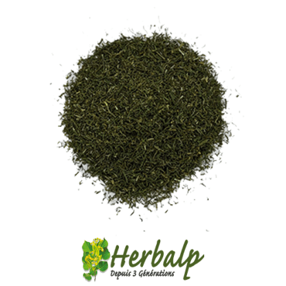 Aneth-feuilles-herbalp