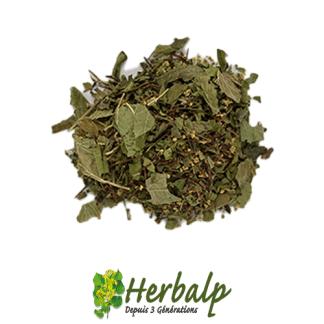melange-plantes-Draineur-exces-eau-herbalp