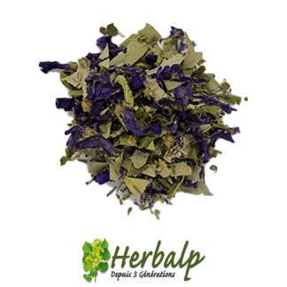 mélange-respiflor-herbalp