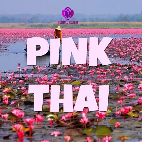 pink-thai