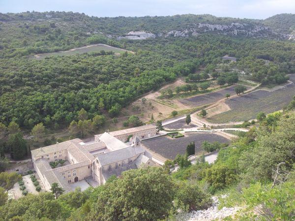 senanque abbey vista