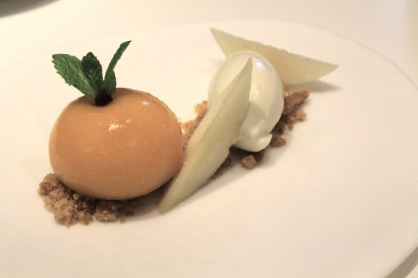 "Cheesecake ""apricot"" with lemon sorbet and fresh pear"