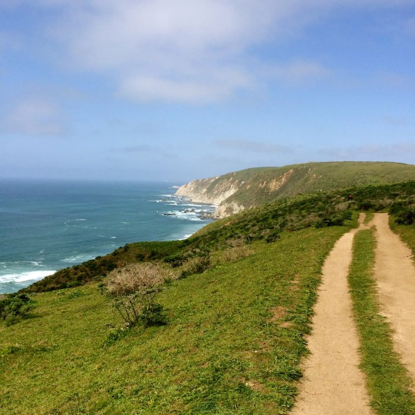 Tomales Point 1