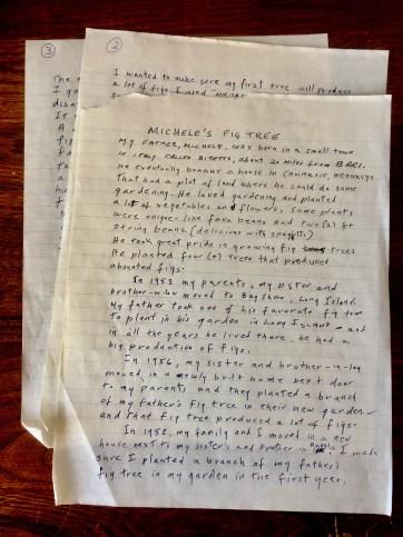 Michele's handwritten story.