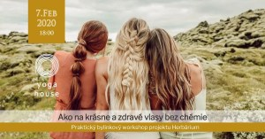 WORKSHOP: Ako na krásne a zdravé vlasy bez chémie @ Yoga House Bratislava | Bratislavský kraj | Slovensko